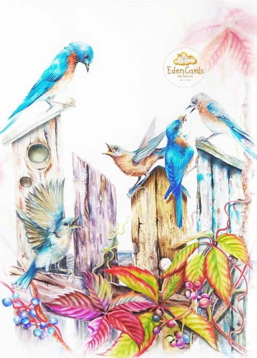 Птичий звон